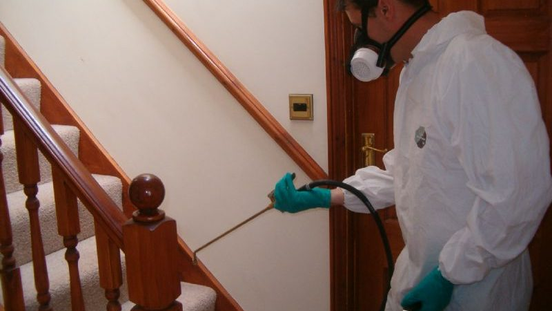Pest Control Company to Provide Honest Services at a Competitive Price