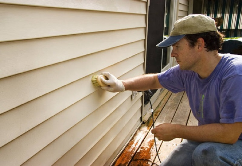 Important facts about Vinyl siding cleaning that you should know
